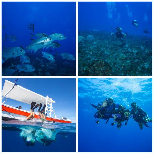 Deep and Drift dives